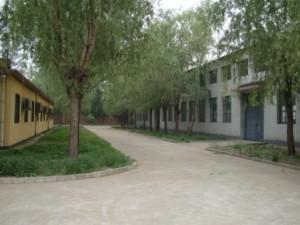 金久卓尔工厂